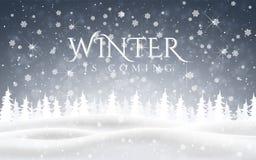 冬天来 圣诞节、多雪的夜森林地风景与落的雪,冷杉、雪花为冬天和新年假日 皇族释放例证