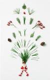 冬天树针、锥体和红色莓果烟花飞溅从圣诞老人 创造性的chrismas概念,平的位置 图库摄影