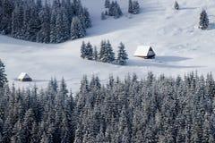 冬天梦想在Tatras 免版税库存图片