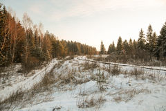冬天森林公路和太阳 库存照片