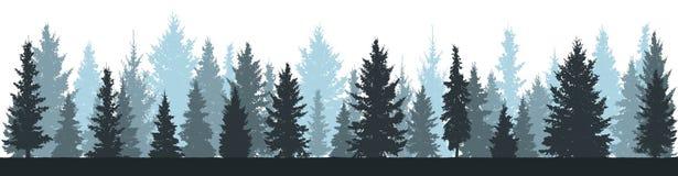冬天森林冷杉木,在白色背景的云杉的剪影 皇族释放例证