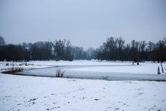 冬天森林和一个冻湖 免版税图库摄影