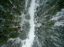 冬天森林和路 在视图之上 照片拍了与寄生虫 杉木和云杉的森林有一条路的在雪 免版税库存图片