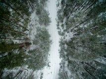 冬天森林和路 在视图之上 照片拍了与寄生虫 杉木和云杉的森林有一条路的在雪 免版税库存照片