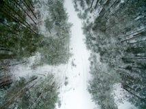 冬天森林和路 在视图之上 照片拍了与寄生虫 杉木和云杉的森林有一条路的在雪 库存照片