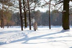 冬天森林的风景图象和走的妇女背面图  免版税库存照片