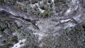 冬天森林航拍的冻湖与quadcopter 免版税库存照片