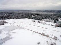 冬天森林鸟瞰图从寄生虫的 图库摄影