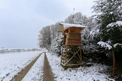 冬天森林鹿在森林边缘的猎人隐藏处 免版税库存图片