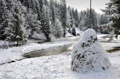 冬天森林 免版税库存图片