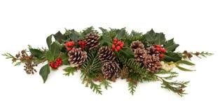 冬天植物群和动物区系 免版税库存图片