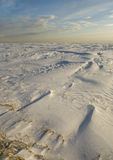 冬天横向。 免版税图库摄影