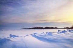 冬天横向。 免版税库存图片
