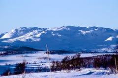 冬天横向在挪威 免版税图库摄影