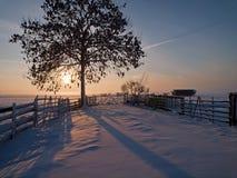 冬天横向在牧场地 库存照片