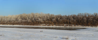 冬天横向 免版税库存图片