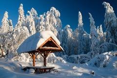 冬天横向 库存照片