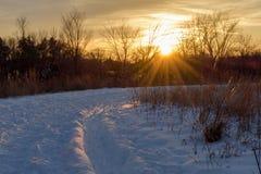 冬天步行在金黄小时 免版税库存图片