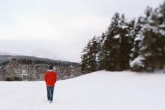 冬天步行 免版税库存照片