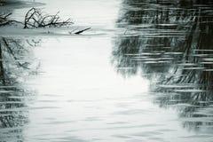 冬天池塘 库存照片