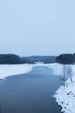 冬天河和展示岸 多云天空结构树 垂直竞争 图库摄影