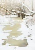 冬天河和树 免版税库存图片
