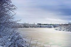 冬天河在森林里 免版税图库摄影