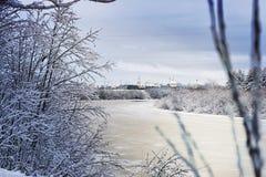 冬天河在森林里 图库摄影