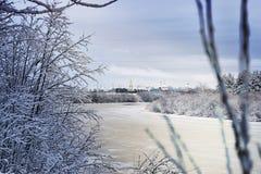 冬天河在森林里 库存照片