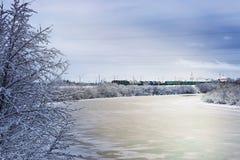 冬天河在森林里 库存图片