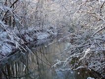 冬天河 库存照片
