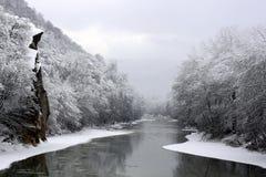 冬天河 图库摄影