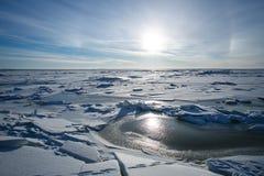 冬天海湾在彼得斯堡在12月 免版税库存图片