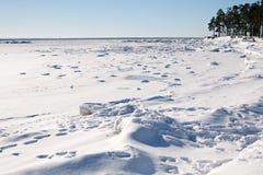冬天海湾 库存照片