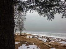 冻结冬天海运的有雾的海岸 Finnland海湾 免版税库存照片