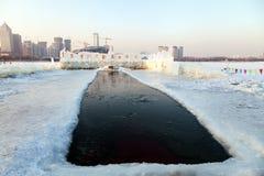 冬天游泳的安排 免版税库存图片