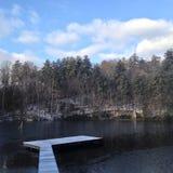 冬天游泳 库存图片