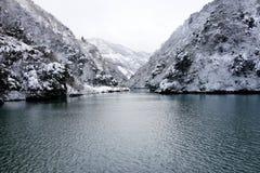 冬天湖 免版税库存照片