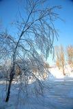 冬天瀑布 免版税库存照片