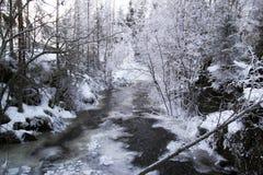 冬天瀑布Kivach 免版税库存图片