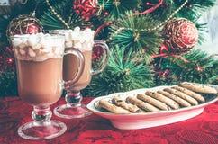 冬天热的饮料,恶用蛋白软糖 免版税图库摄影