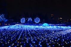 冬天照明在东京 免版税库存照片