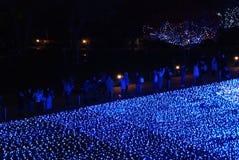 冬天照明在东京 免版税图库摄影