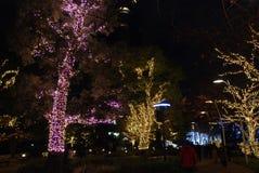 冬天照明在东京 库存图片