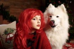 冬天狗假日和圣诞节 一个女孩一件被编织的毛线衣的和有有一只宠物的红色头发的在演播室 圣诞节 免版税库存照片