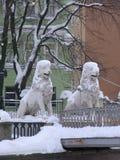 冬天狮子在圣彼德堡 图库摄影