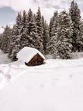 冬天白云岩客舱森林 图库摄影