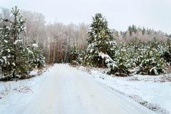 冬天的传说、重的积雪的树和房子derevne的 乌克兰纳 免版税库存图片