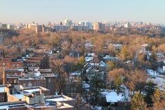 布朗克斯在冬天 免版税库存照片
