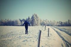 冬天矿石山 库存照片